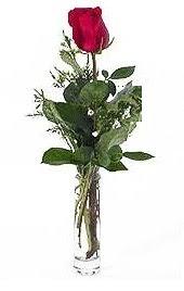 Vazo içerisinde 1 adet kirmizi gül  Samsun çiçek gönderme sitemiz güvenlidir