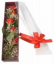kutu içinde 5 adet kirmizi gül  Samsun yurtiçi ve yurtdışı çiçek siparişi