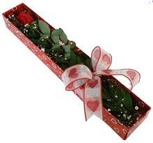 Tek kirmizi gül kutu içerisinde  Samsun çiçek siparişi sitesi