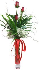 Samsun çiçek mağazası , çiçekçi adresleri  3 adet kirmizi gül vazo içerisinde