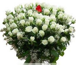 Samsun kaliteli taze ve ucuz çiçekler  100 adet beyaz 1 adet kirmizi gül buketi