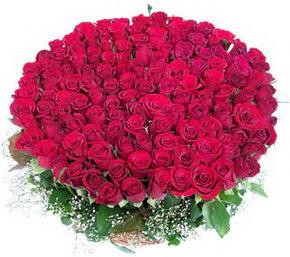 Samsun çiçekçiler  100 adet kırmızı gülden görsel buket