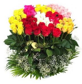 Samsun hediye çiçek yolla  51 adet renkli güllerden aranjman tanzimi