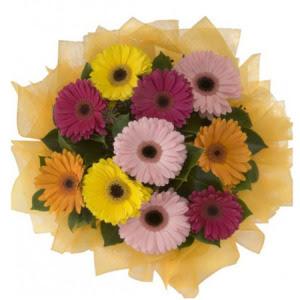 Samsun çiçek siparişi vermek  11 adet karışık gerbera çiçeği buketi