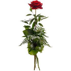 Samsun çiçekçiler  1 adet kırmızı gülden buket