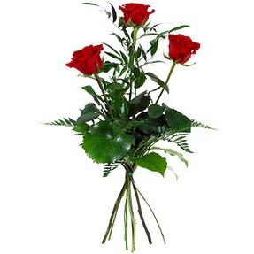Samsun çiçek yolla  3 adet kırmızı gülden buket