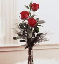 Samsun kaliteli taze ve ucuz çiçekler  Vazoda 3 adet güzel gül