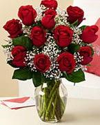 Sevgilime hediye 9 adet 1.ci kalite gül  Samsun çiçekçi telefonları