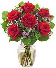Kız arkadaşıma hediye 6 kırmızı gül  Samsun yurtiçi ve yurtdışı çiçek siparişi