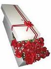 Samsun uluslararası çiçek gönderme  11 adet 1.kalite magnum güller