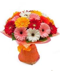 Renkli gerbera buketi  Samsun çiçekçi telefonları