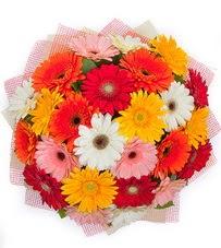 15 adet renkli gerbera buketi  Samsun internetten çiçek satışı