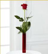 Vazo içerisinde 1 adet kırmızı gül  Samsun yurtiçi ve yurtdışı çiçek siparişi