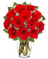 12 adet vazoda kıpkırmızı gül  Samsun İnternetten çiçek siparişi