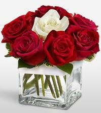 Tek aşkımsın çiçeği 8 kırmızı 1 beyaz gül  Samsun çiçek yolla