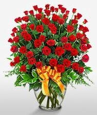 Görsel vazo içerisinde 101 adet gül  Samsun İnternetten çiçek siparişi