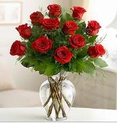 Vazo içerisinde 12 kırmızı gül  Samsun 14 şubat sevgililer günü çiçek