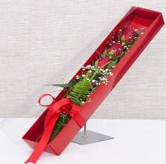 Kutu içerisinde 3 adet kırmızı gül  Samsun çiçek yolla , çiçek gönder , çiçekçi