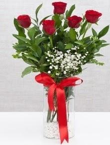 cam vazo içerisinde 5 adet kırmızı gül  Samsun çiçek gönderme sitemiz güvenlidir