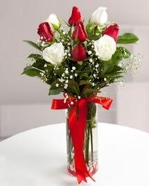 5 kırmızı 4 beyaz gül vazoda  Samsun çiçek gönderme sitemiz güvenlidir