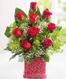 Cam içerisinde 9 adet kırmızı gül  Samsun kaliteli taze ve ucuz çiçekler