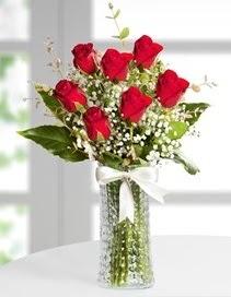 Cam vazoda 7 adet kırmızı gül  Samsun anneler günü çiçek yolla