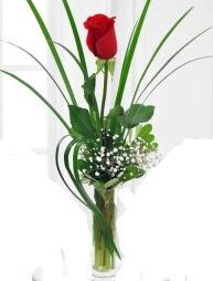 Cam içerisinde 1 kırmızı gül  Samsun online çiçek gönderme sipariş