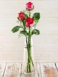 Cam içerisinde 3 kırmızı gül  Samsun 14 şubat sevgililer günü çiçek