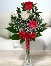 Camda 2 kırmızı 1 beyaz gül  Samsun hediye sevgilime hediye çiçek