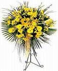Samsun internetten çiçek satışı  Sari kazablanka Ferforje