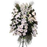 Samsun İnternetten çiçek siparişi  Ferforje beyaz renkli kazablanka