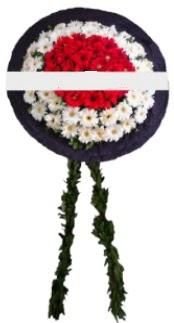 mozele çiçeği  Samsun çiçek satışı