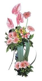 Samsun çiçek siparişi sitesi  Pembe Antoryum Harikalar Rüyasi