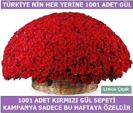 1001 Adet kırmızı gül Bu haftaya özel  Samsun çiçek siparişi vermek