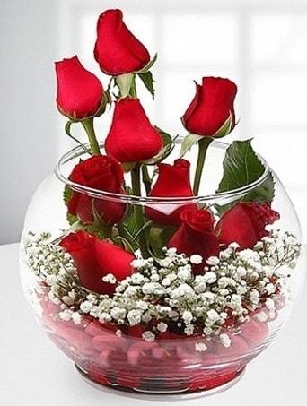 Kırmızı Mutluluk fanusta 9 kırmızı gül  Samsun çiçek mağazası , çiçekçi adresleri