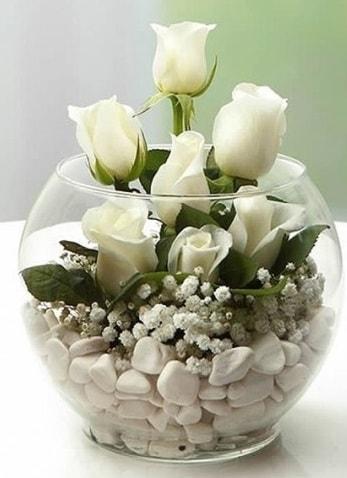Beyaz Mutluluk 9 beyaz gül fanusta  Samsun çiçek mağazası , çiçekçi adresleri