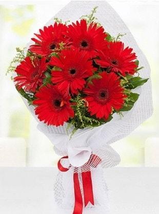 Kırmızı Gelbera Buketi  Samsun yurtiçi ve yurtdışı çiçek siparişi