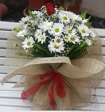 Papatya 1 adet kırmızı gül buketi  Samsun güvenli kaliteli hızlı çiçek