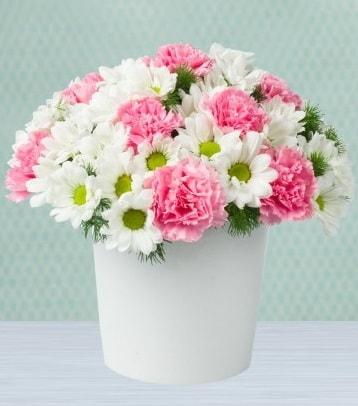 Seramik vazoda papatya ve kır çiçekleri  Samsun çiçek mağazası , çiçekçi adresleri