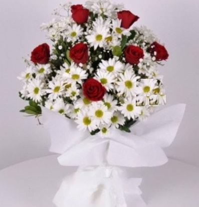 7 adet kırmızı gül ve papatyalar krizantem  Samsun kaliteli taze ve ucuz çiçekler