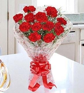 12 adet kırmızı karanfil buketi  Samsun çiçek siparişi vermek