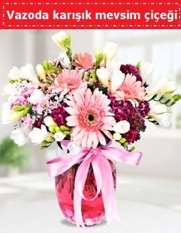 Vazoda karışık mevsim çiçeği  Samsun anneler günü çiçek yolla