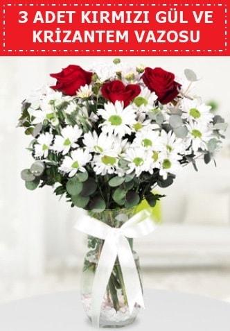 3 kırmızı gül ve camda krizantem çiçekleri  Samsun cicekciler , cicek siparisi