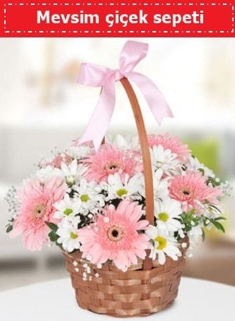 Mevsim kır çiçek sepeti  Samsun anneler günü çiçek yolla