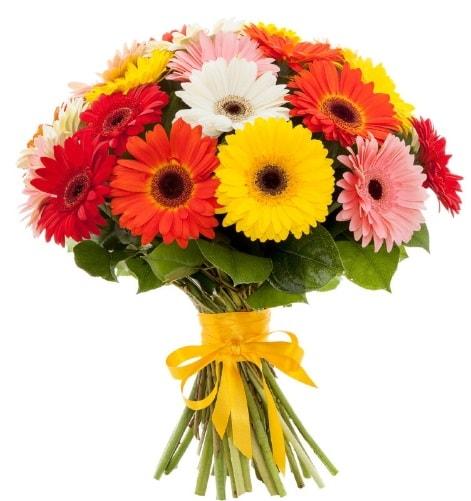 Gerbera demeti buketi  Samsun 14 şubat sevgililer günü çiçek