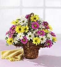 Samsun güvenli kaliteli hızlı çiçek  Mevsim çiçekleri sepeti